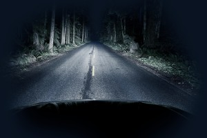 Night Driving Thru Forest - Straight Road and Creepy Dark Forest. Transportation Photo Collection.