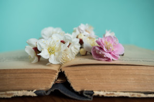 Spring flowering with old books on wooden background. Flowers in spring series: plum blossoming in spring it is the only remaining last winter flower is the earliest blooming flower in spring. It shows struggle and pride. ** Note: Shallow depth of field